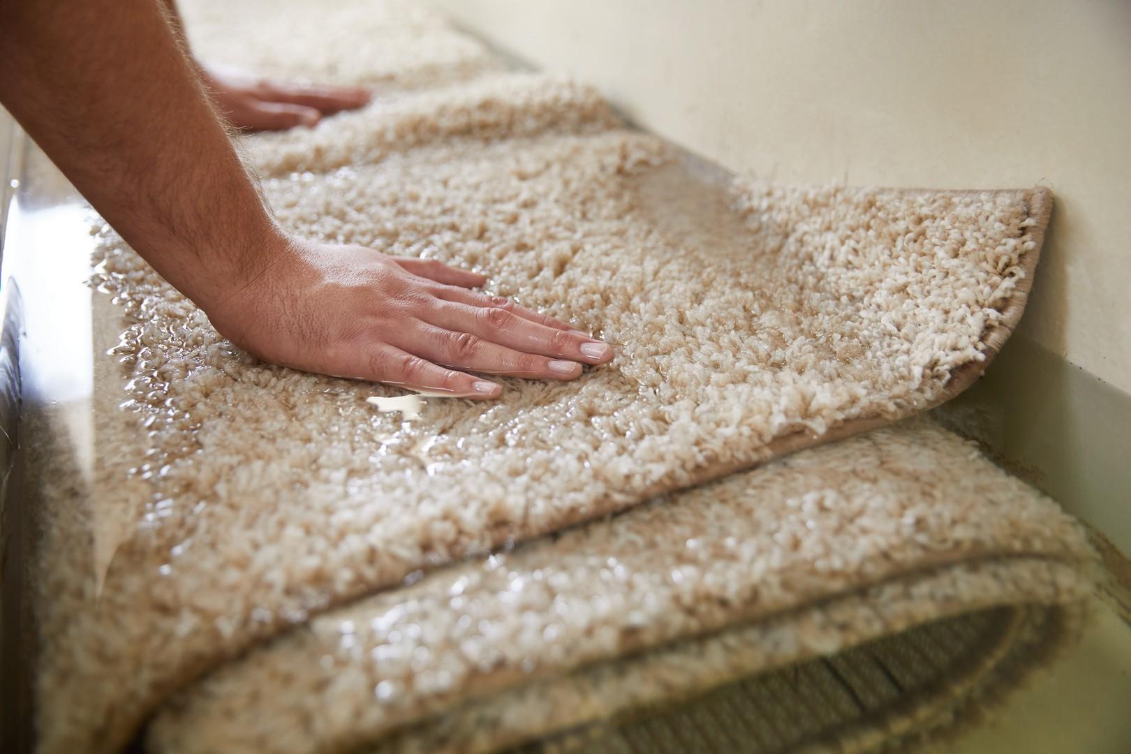 Welniany dywan